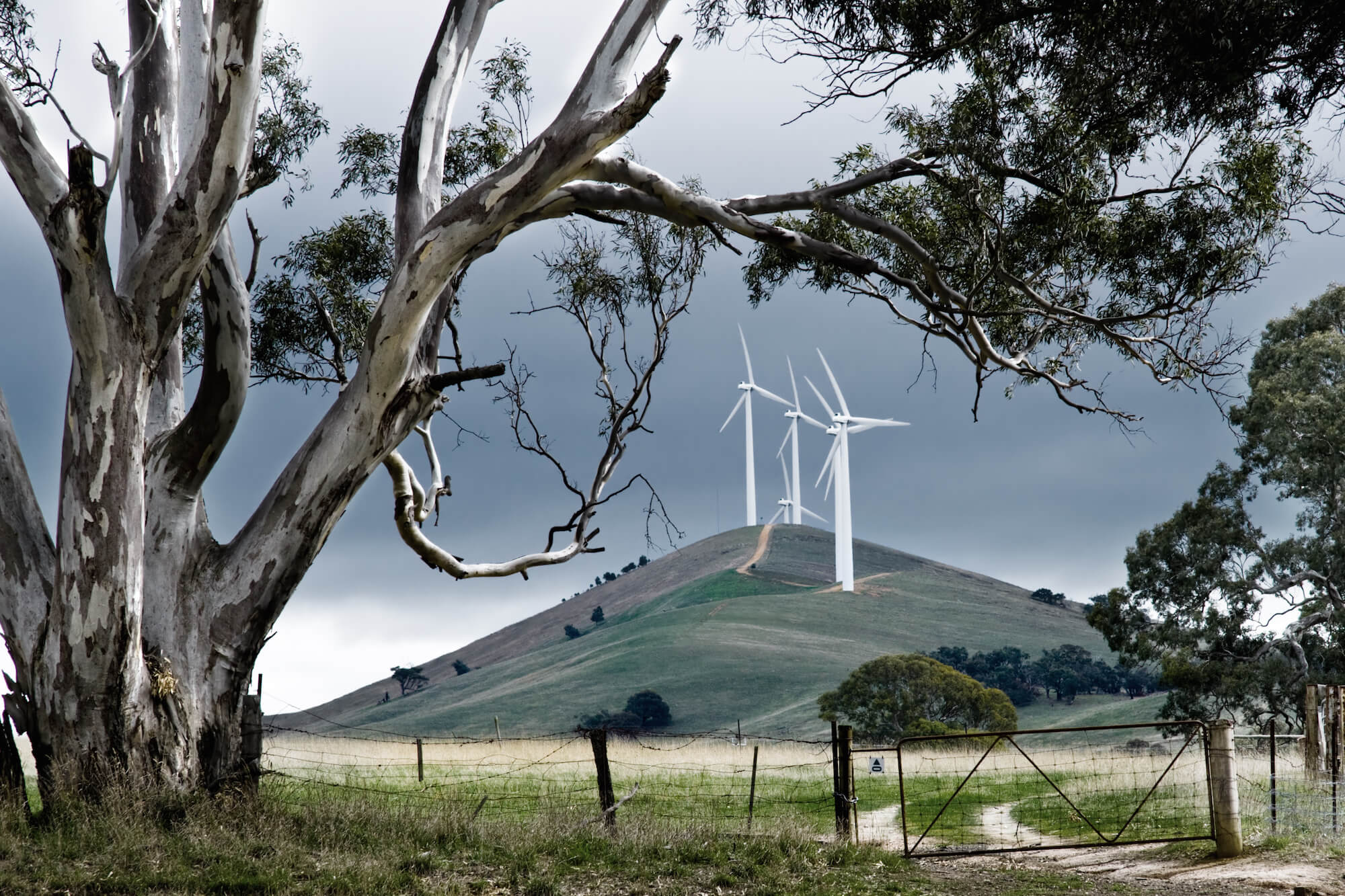 Wind_farm_farm_gate_Australia-2_cropped